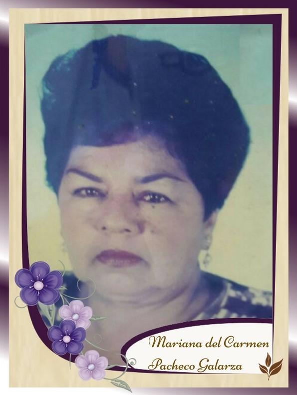 Mariana del carmen pacheco galarza memorial jardines for Alma de jardin pacheco